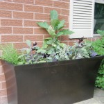 Purple and Green Planter